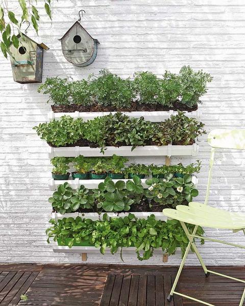 DIY flower wall garden white plastic troughs flowerpots
