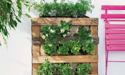 DIY-pallet-vertical-garden-strawberries-herbs-balcony