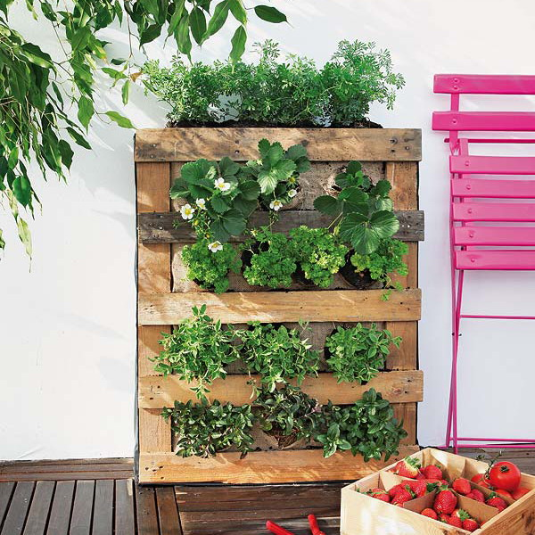 How to build a pallet vertical garden and a diy plastic for Balcony vertical garden