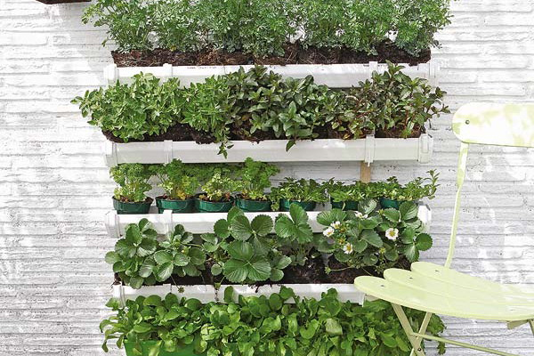 DIY wall garden herbs strawberries plastic troughs