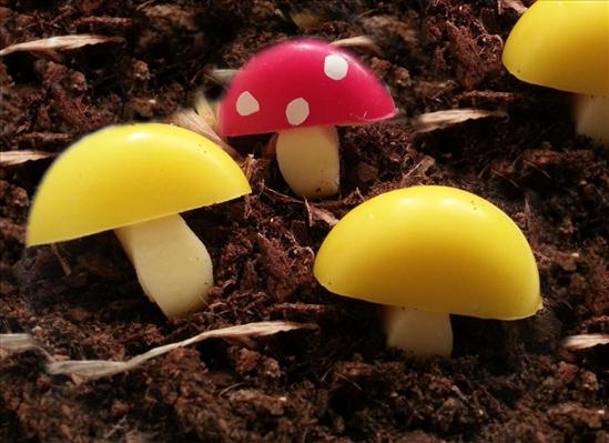 cute party food babybel mushrooms yellow red
