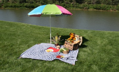 fun-picnic-ideas-creative-uses-packed-things