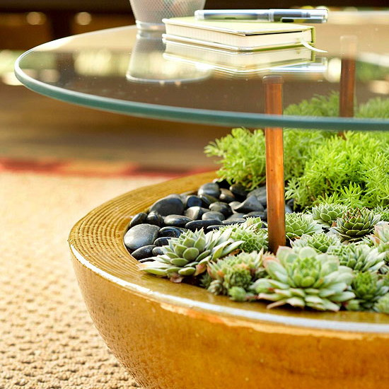 5 Ways To Decorate Your Deck With Plants: How To Plan And Design An Outdoor