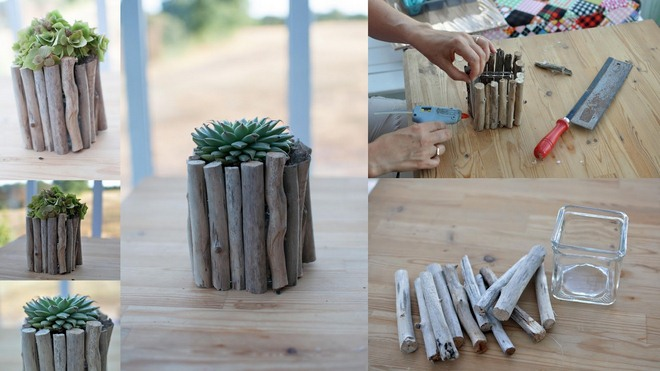 DIY driftwood decor ideas -glass-vase-succulents