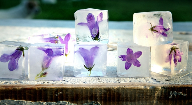 Summer decorating ideas ice-cubes-calluna-petals