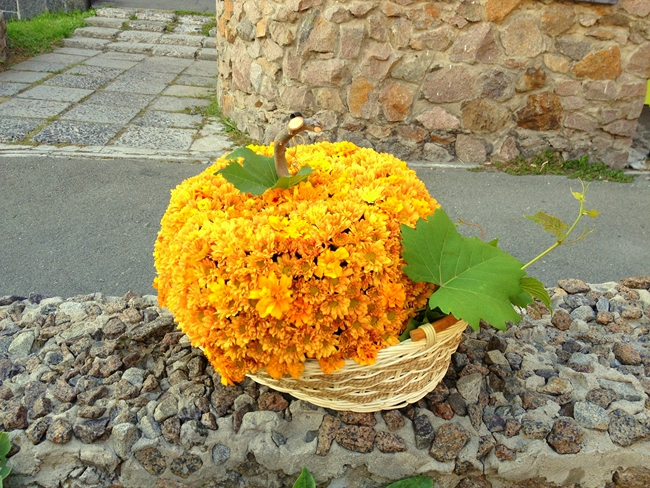 fall-decorating-ideas-orange-mums-basket-looking-like-pumpkin