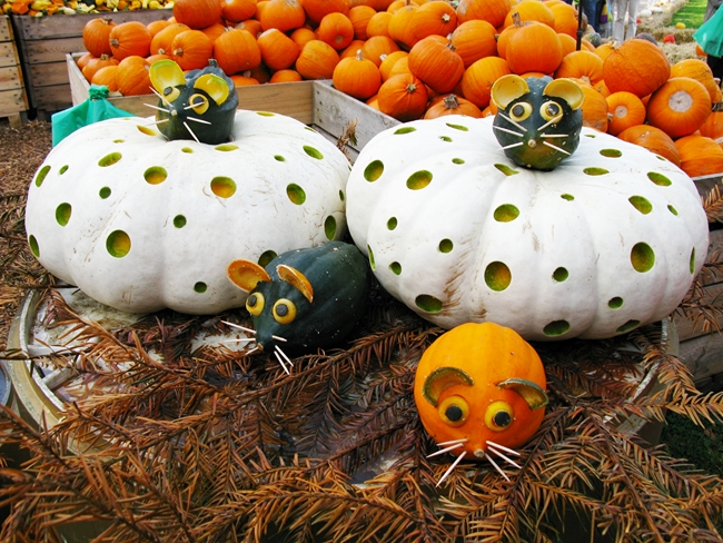 fall-pumpkin-decor-big-white-pumkins-litte-mice-made-of-green-gourds