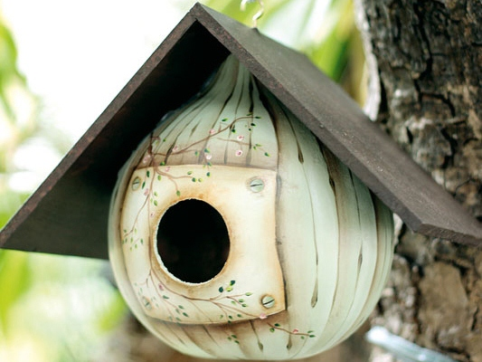 How To Make A Gourd Birdhouse Beautiful Design And Paint