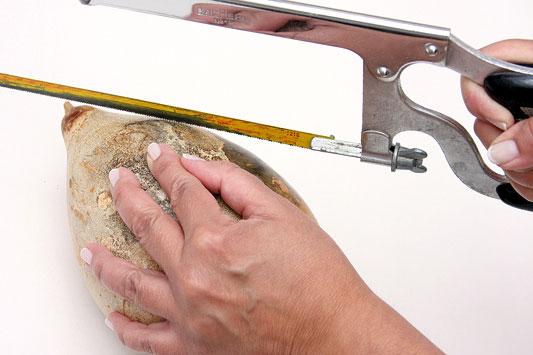 gourd diy cuting birdhouse