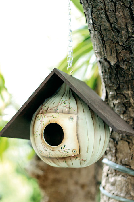 make gourd birdhouse unique design