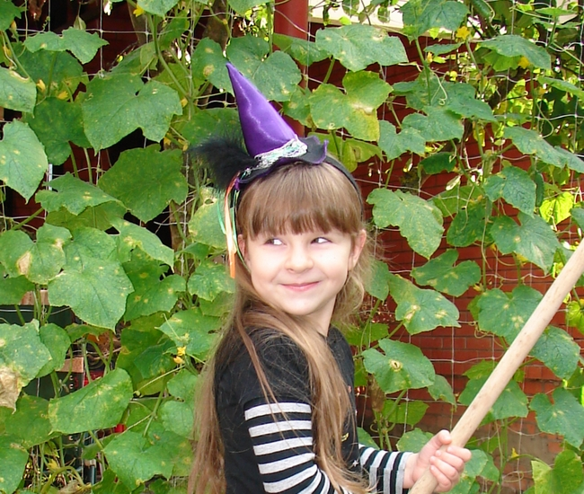 diy halloween essentials mini witch hat kids costume