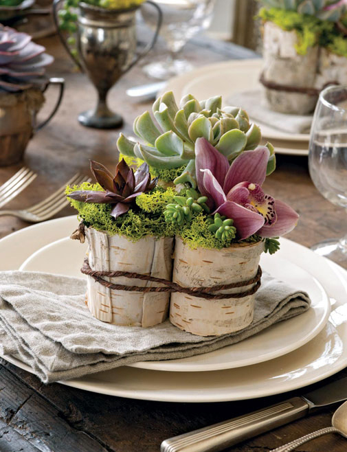 Table Decoration Birch Bark Succulents Rustic Flair
