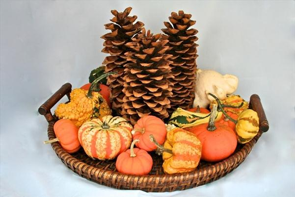 diy thanksgiving centerpiece mini gourds pinecones tray