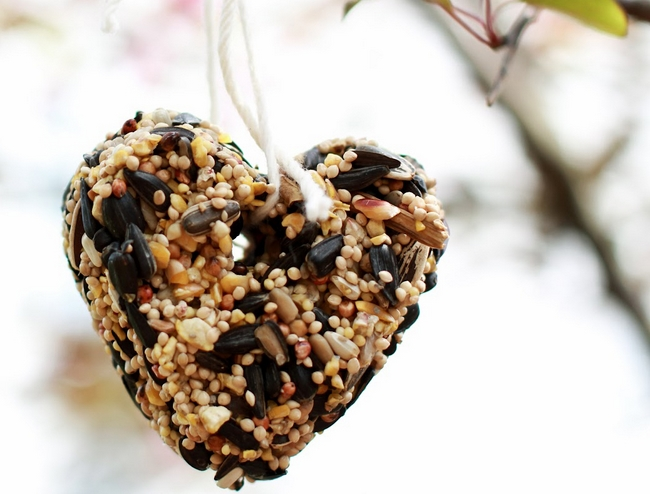 garden-decorations-winter-christmas-bird-feeders-seeds