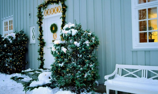 outdoor-christmas-winter-decor-strings-lights-front-door-bushes