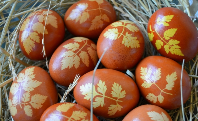 naturally dyed easter eggs onion skins tradition orange colour