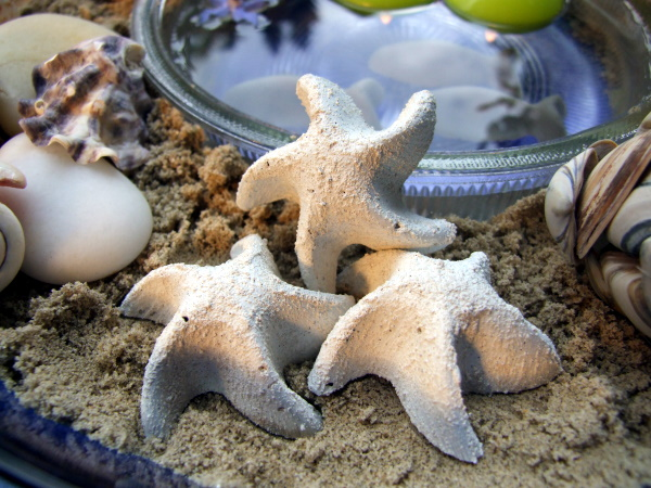 diy concrete molds ideas sea-themed star fish