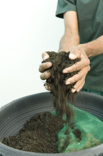 diy herb garden idea fertilized black soil large container