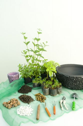 diy herb garden idea indoor apartment planter materials