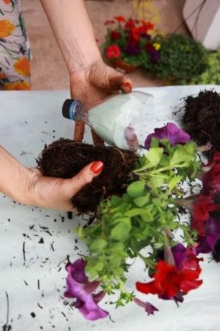 vertical garden planter diy plastic vases recycling bottle