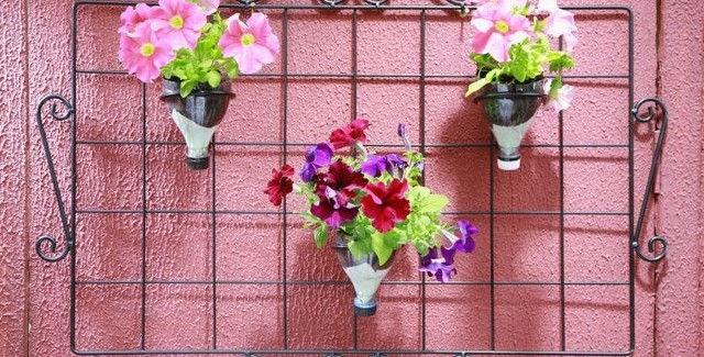 Fun plastic bottle recycling – Vertical garden or vases for succulents
