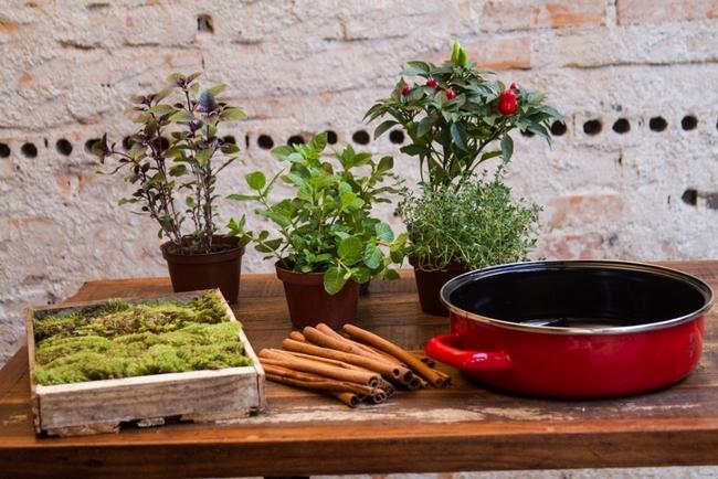 handmade herb garden home kitchen materials herbs moss enamel pan
