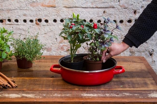 indoor herb garden arrangement pots vegetables enamel pan