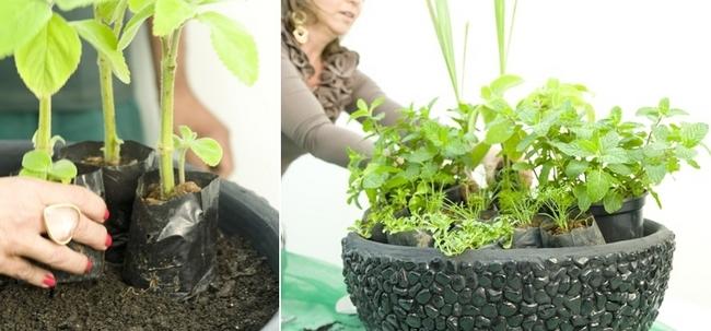 Indoor Herb Garden Planters Edee Franklin Best Indoor Herb Garden