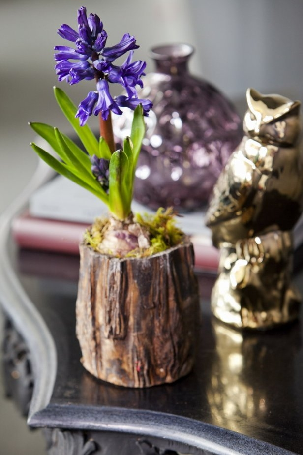 purple hyacinth moss rustic container home decor