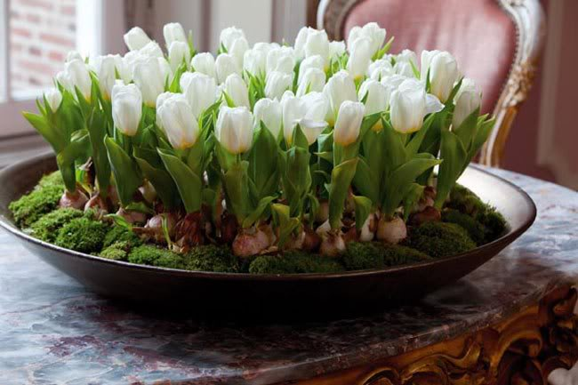 Spring Decorating Ideas Home Centerpiece Table Moos White Tulips