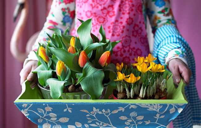 spring-home-decor-tulips-crocus-plant-container
