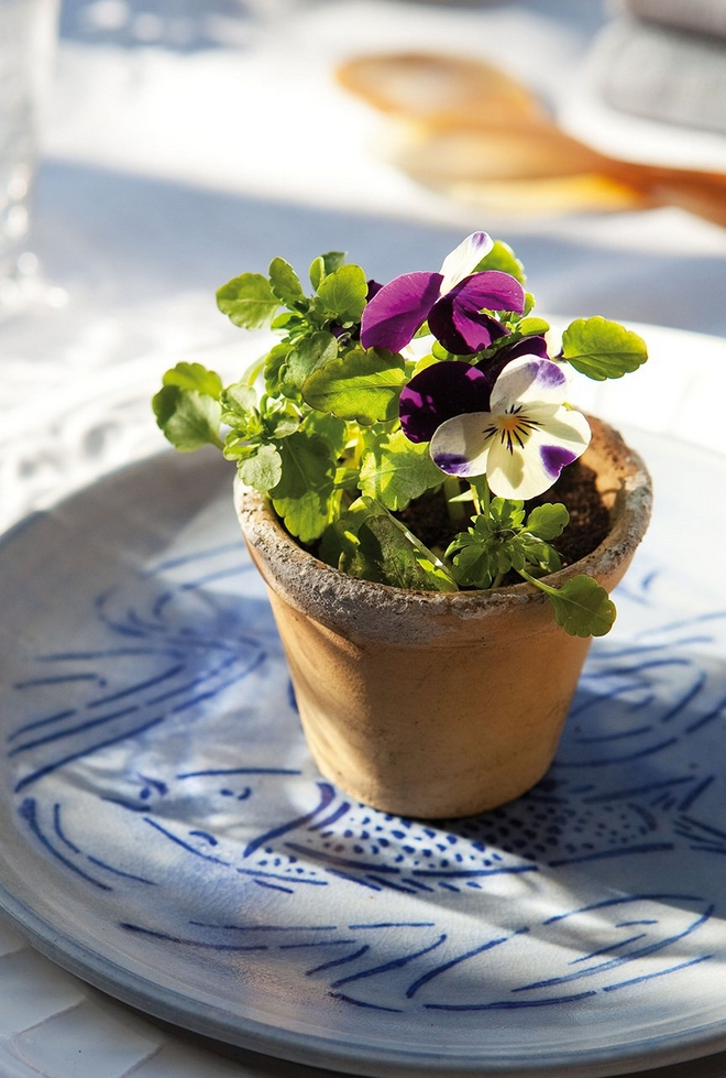 DIY spring table decorations pansies-clay-pot