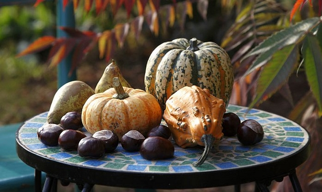 diy-fall-decorating-ideas-pumpkins-different-colors-textures