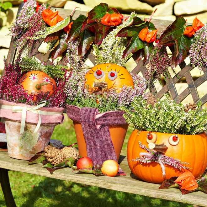 fall-decorating-ideas-pumpkins-clay-pots-heather-plants