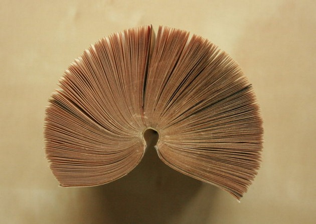 business-greeting-card-display-stand-book-pages