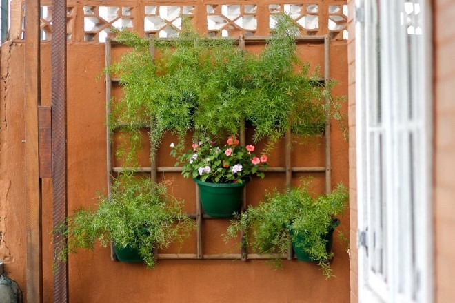 wooden lattice pots holder diy vertical garden ideas