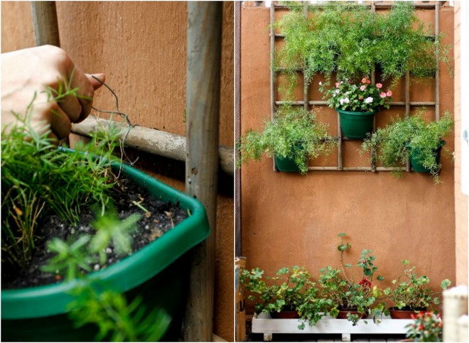 2 Space Saving Diy Vertical Garden Ideas For Small Balcony