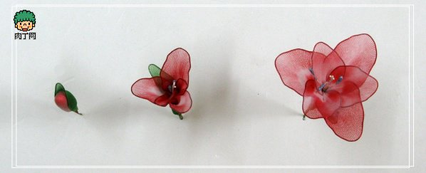 diy-gladiolus-blossom-bud