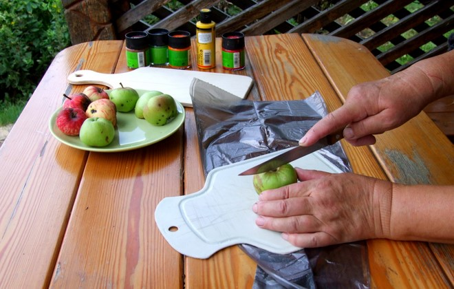diy-crafts-for-fall-decorations-half-cutting-fruits-print-tool-apple-stamp
