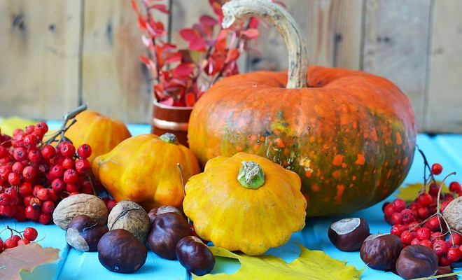 Natural Fall Decorations 9 Quick And Easy Craft Ideas