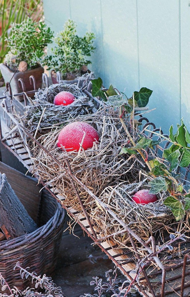 large outdoor christmas decorations small bird nests red christmas balls and green ivy leaves