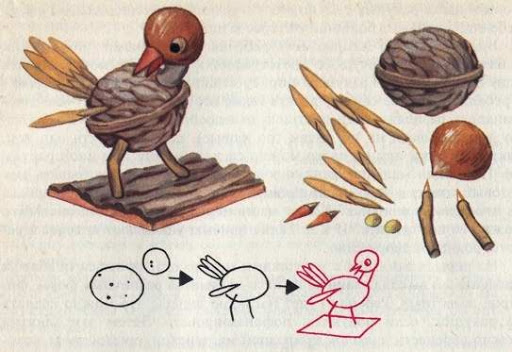 preschool autumn crafts bird from walnut