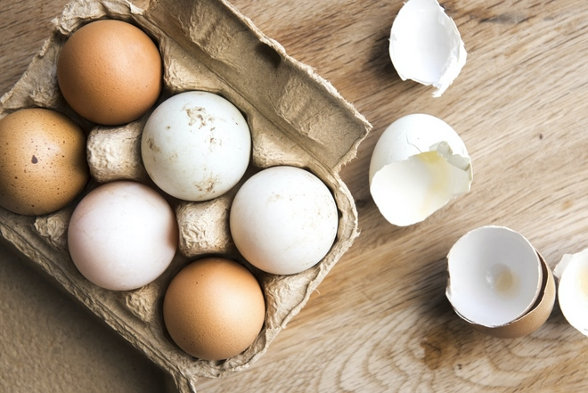 Why are some eggs white and some brown?