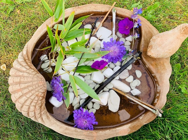 bee water pond with pebbles and flowers