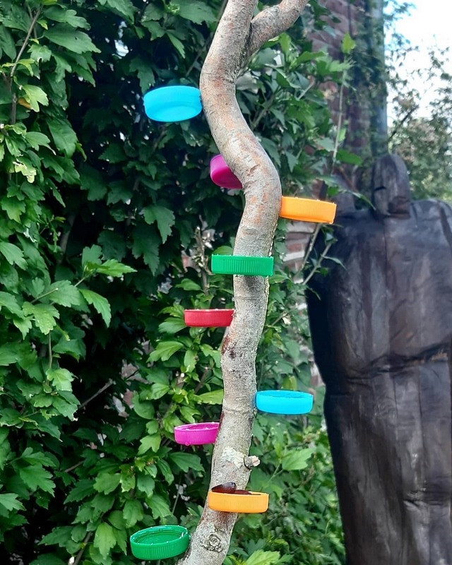 bee waterer diy from a branch and plastic bottle caps