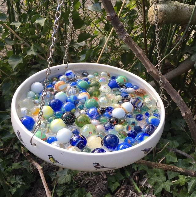hanging honey bee watering station with marbles in a tray
