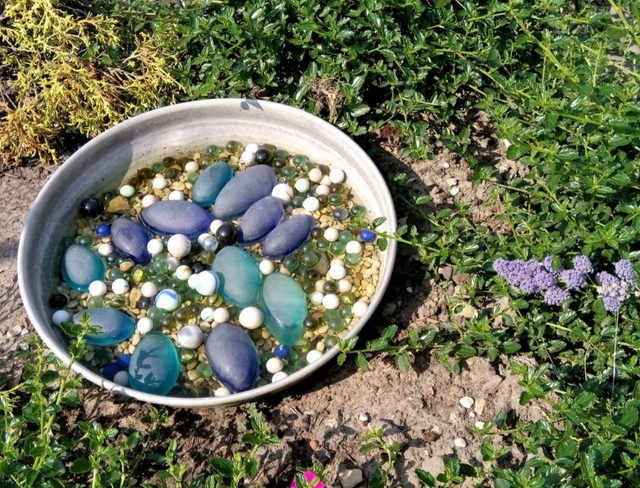 honey bee water station in a plate with marbles